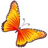 Раскраски бабочек для детей и взрослых
