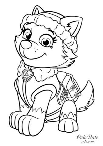 Щенячий патруль - раскраска с щенком Эверест