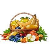 Фрукты и овощи - раскраски для детей