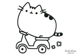 Кошечка Пушин на скутере бесплатная раскраска