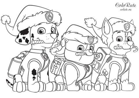 Раскраска из Щенячьего патруля - Крепыш Маршал и Рокки на Рождество