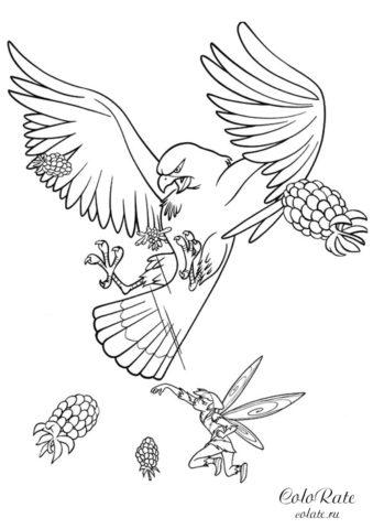 Разукрашка Нападение орла - Мультфильм Феи 2008