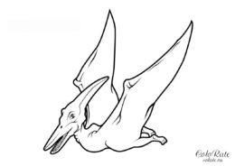 Птеранодон летит в небе - раскраска для детей