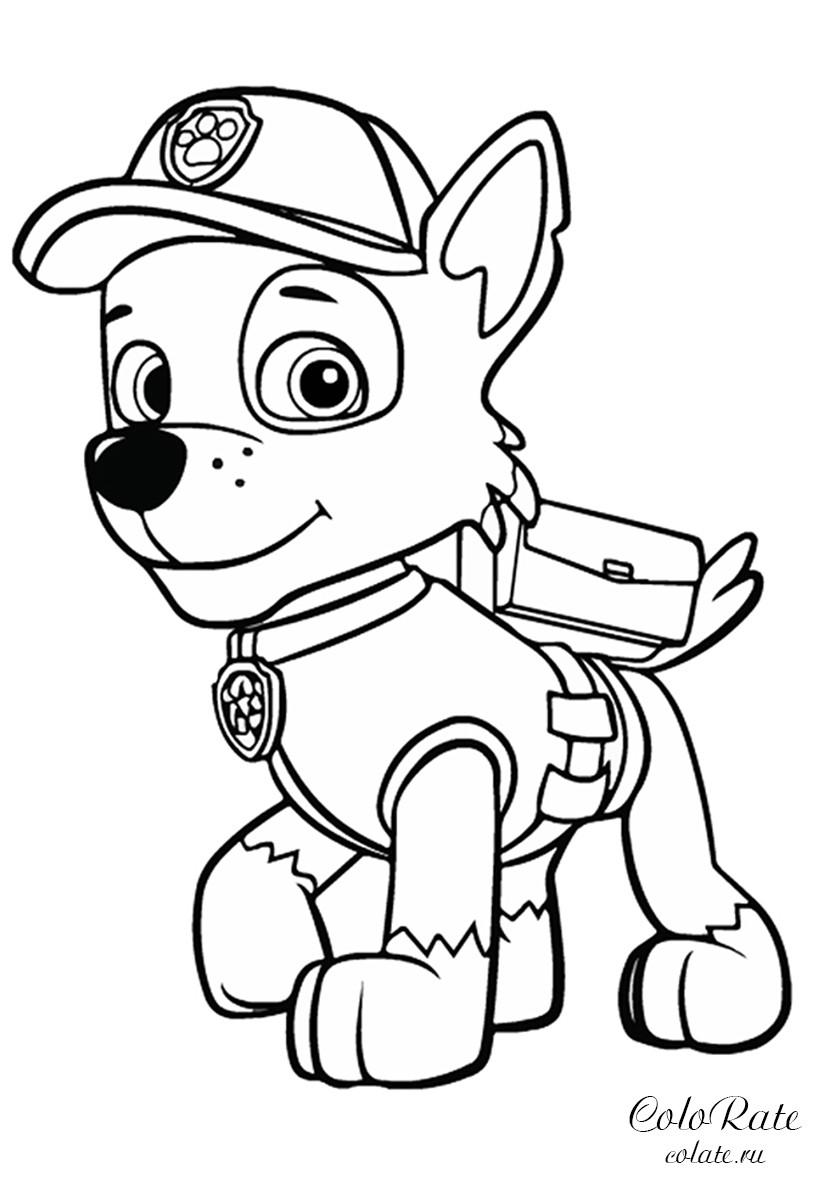 раскраска рокки супергерой распечатать щенячий патруль