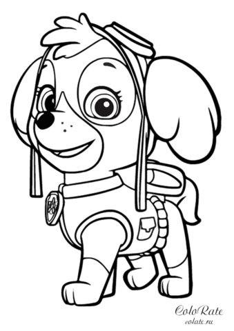 Щенячий патруль - раскраска со Скай