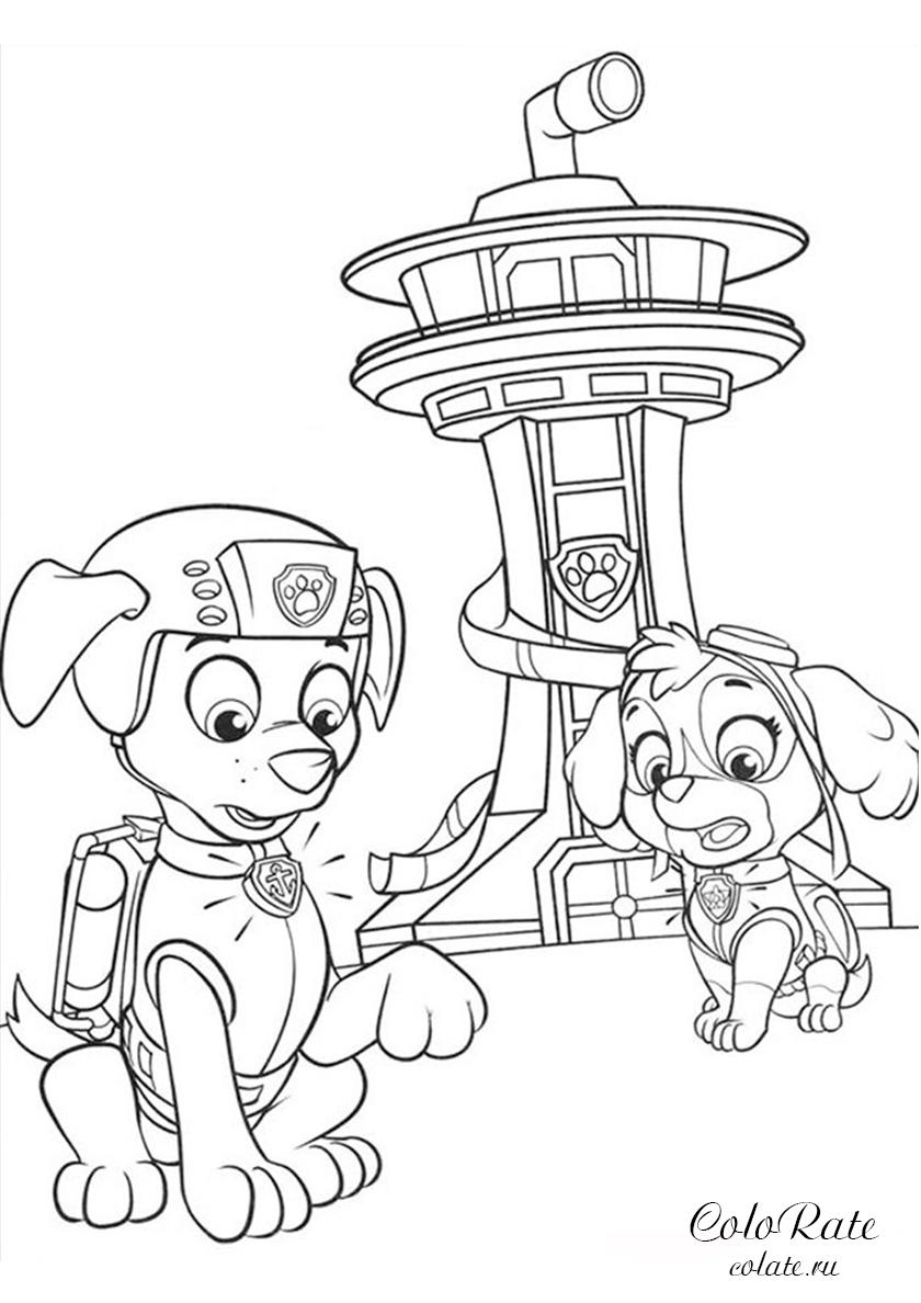 Раскраска Скай и Зуму вызывают на базу распечатать ...