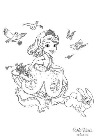 София собирает цветы - раскраска для детей