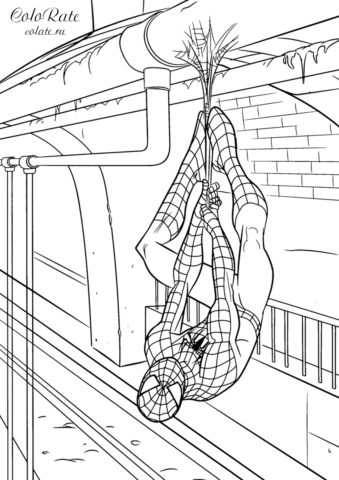 Человек-паук висит на паутинке - бесплатная раскраска