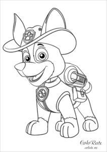 Щенячий патруль - раскраска с Трекером