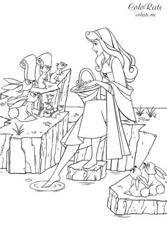 Угощение для белок - разукрашка с принцессой Авророй дисней