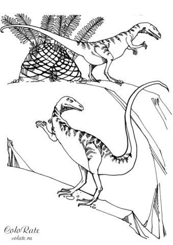 Велоцирапторы на охоте - раскраска с динозаврами
