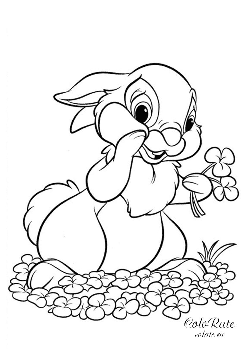 Раскраска Зайчонок собирает цветы распечатать | Зайцы, кролики