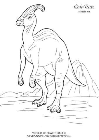 Зауролоф - распечатать раскраску с динозавром