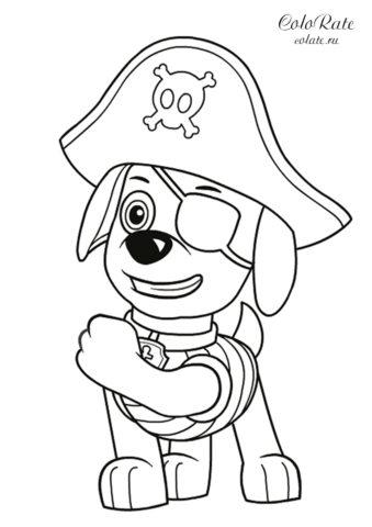 Зума — одноглазый пират - детская разукрашка по мультику Щенячий патруль