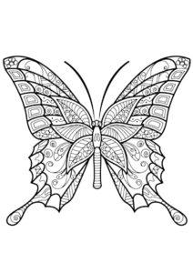 Антистресс бабочка - Бабочки распечатать раскраску на А4