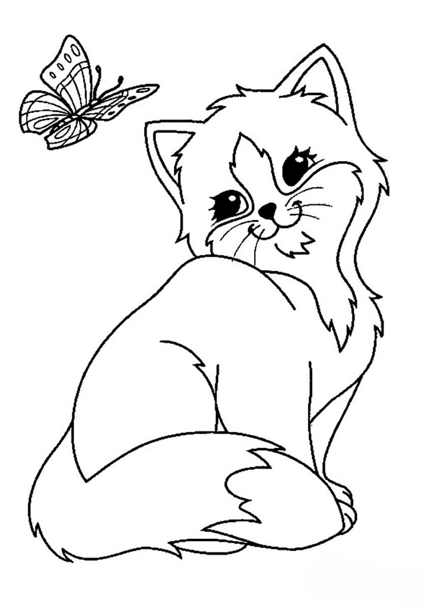 Раскраска Бабочка и котенок распечатать | Коты, кошки, котята