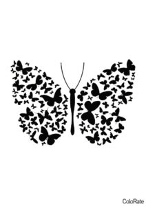 Бабочка с великолепными крыльями (Трафареты бабочек) бесплатный трафарет