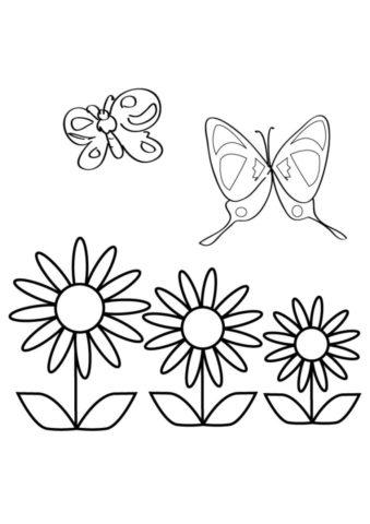 Раскраска Бабочки и цветы распечатать   Весна