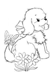 Раскраска Болонка рада встрече с бабочкой распечатать и скачать - Собаки и щенки