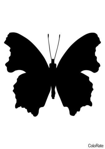 Большекрылая бабочка (Трафареты бабочек) трафарет для печати и загрузки