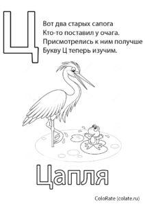 Раскраска Буква Ц - Цапля - Буквы и алфавит