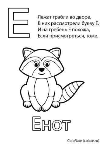 Буква Е - Енот - Буквы и алфавит бесплатная раскраска