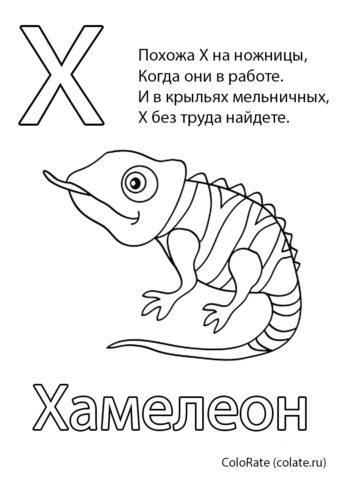 Раскраска Буква Х - Хамелеон - Буквы и алфавит