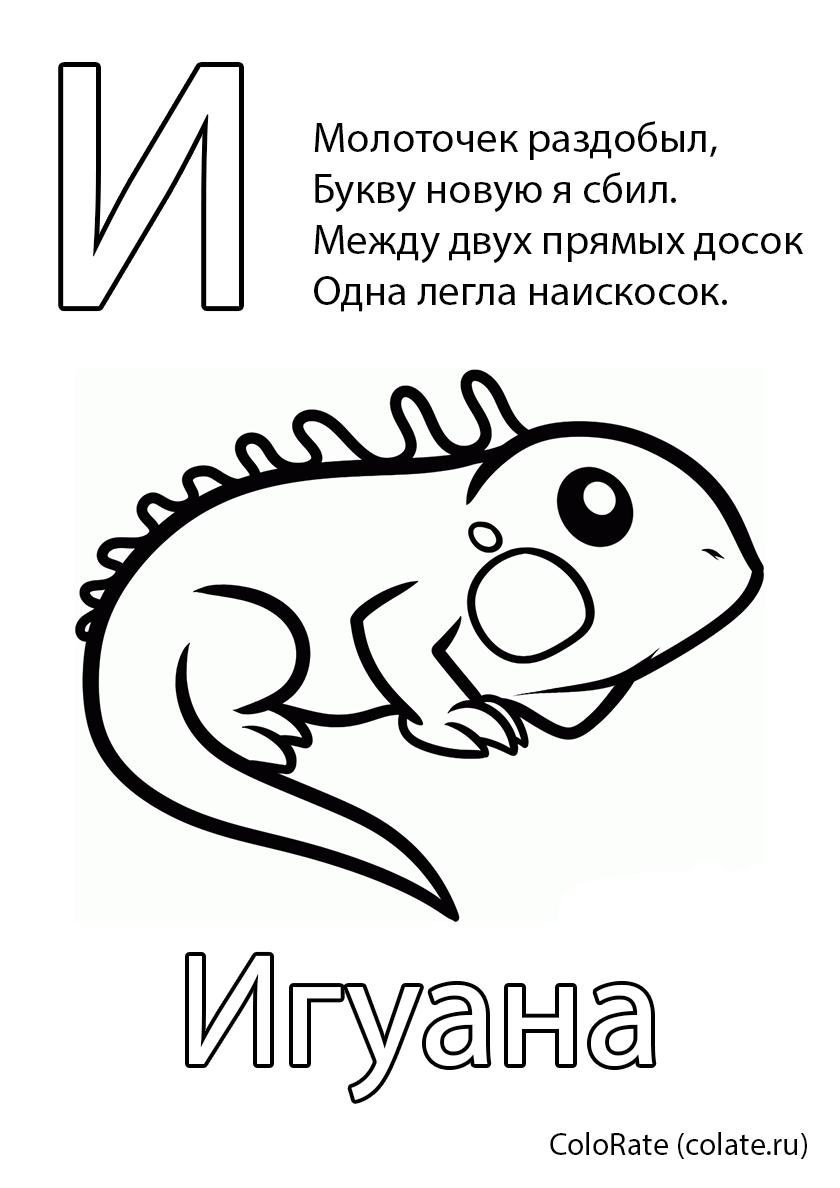 Раскраска Буква И - Игуана распечатать | Буквы и алфавит