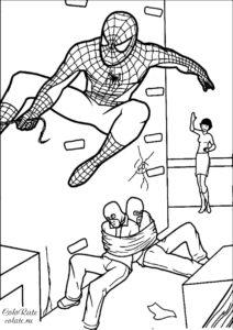 Spider-man связал преступников - разукрашка для мальчиков