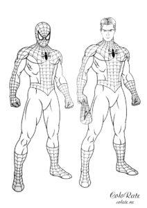 Питер Паркер в костюме Человека-паука скачать и распечатать