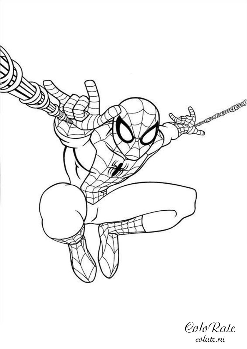 Раскраска Полёт Человека-паука на паутине распечатать ...