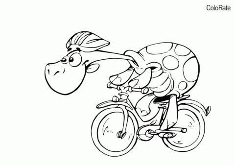 Черепаха-гонщик раскраска распечатать бесплатно на А4 - Велосипеды