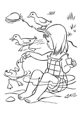 Девочка кормит уток (Лето) раскраска для печати и загрузки