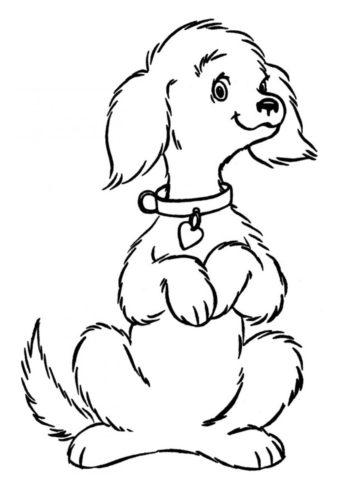Раскраска Довольная собачка стоит на задних лапах ...