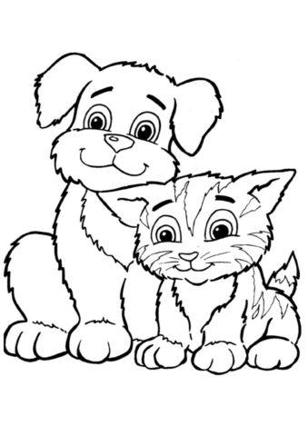 Коты, кошки, котята распечатать раскраску - Друзья кот и пес