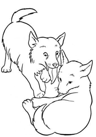 Два пёсика играются друг с другом (Собаки и щенки) распечатать бесплатную раскраску