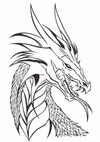 Драконы распечатать раскраску - Голова дракона