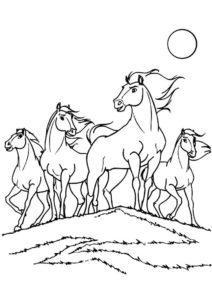 Бесплатная раскраска Горные мустанги распечатать на А4 - Лошади и пони