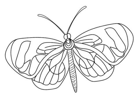 Грета ото раскраска распечатать на А4 - Бабочки