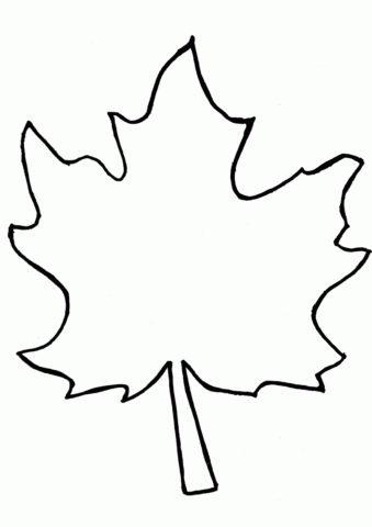 Раскраска Кленовый листик распечатать на А4 и скачать - Листья