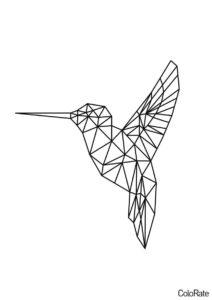 Бесплатная раскраска Колибри распечатать на А4 и скачать - Геометрические фигуры