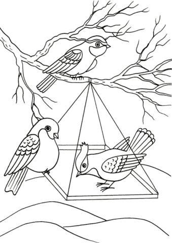 Бесплатная раскраска Кормушка для птичек распечатать и скачать - Зима