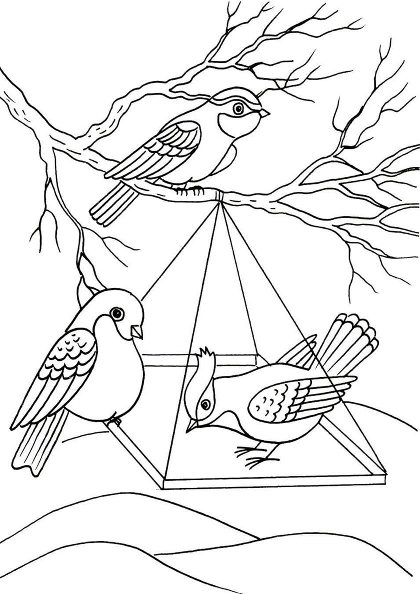Раскраска Кормушка для птичек распечатать | Зима