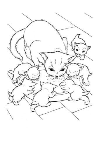 Распечатать раскраску Кошка с котятами пьют молоко - Коты, кошки, котята