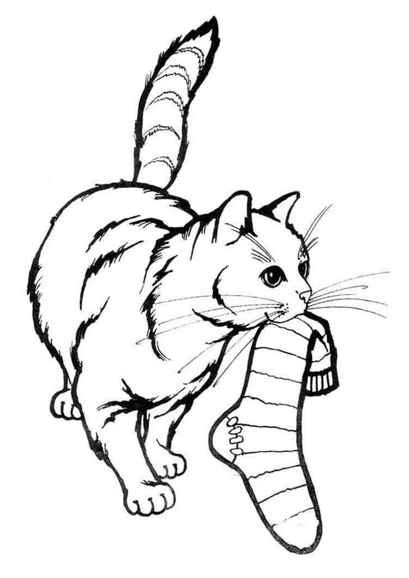 Напечатать картинку кошки