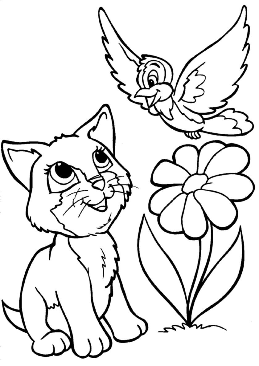 Раскраска Котенок и воробей распечатать | Коты, кошки, котята