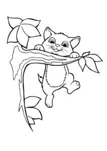 Раскраска Котенок на ветке распечатать на А4 - Коты, кошки, котята