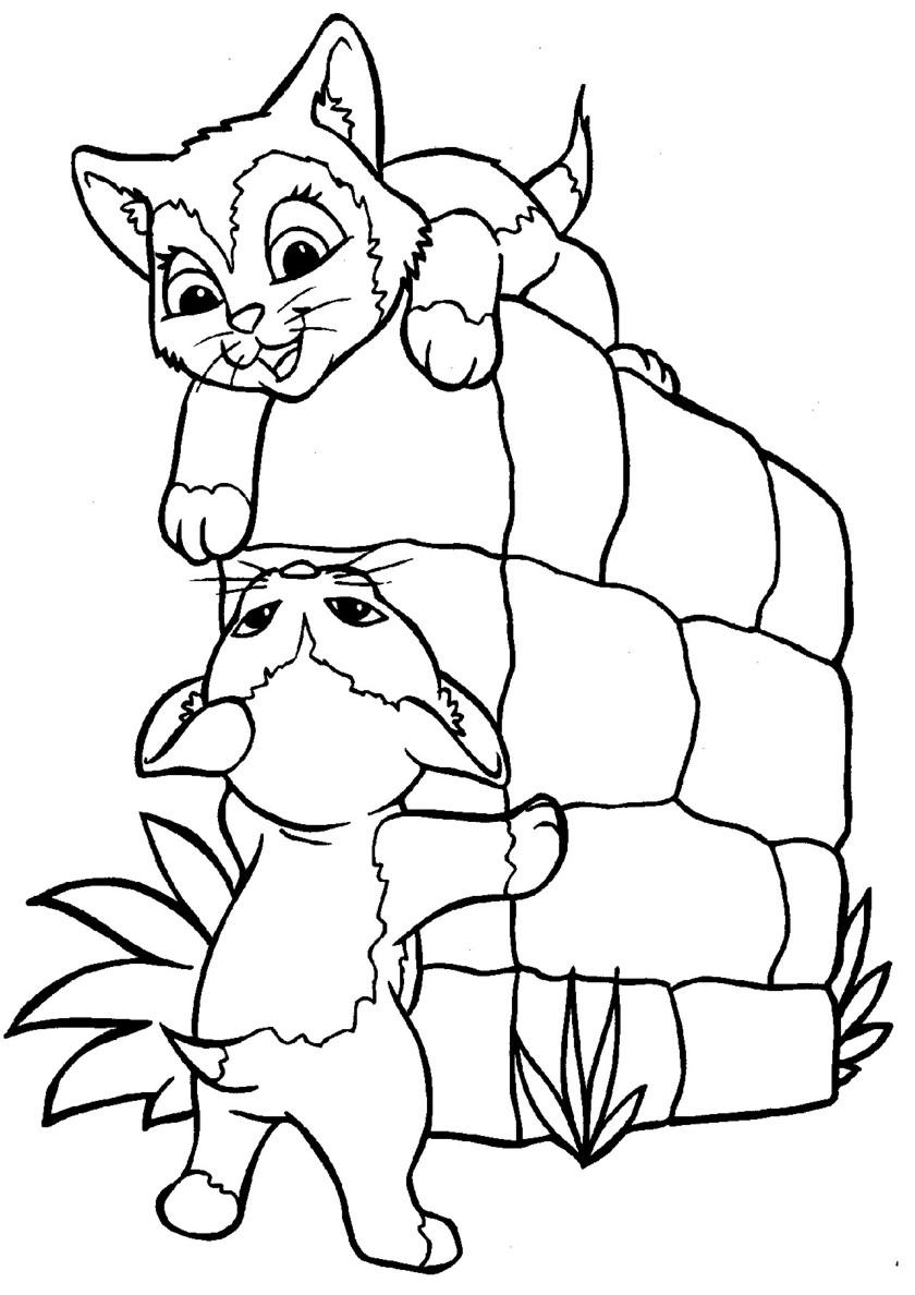 Раскраска Котята играют распечатать | Коты, кошки, котята