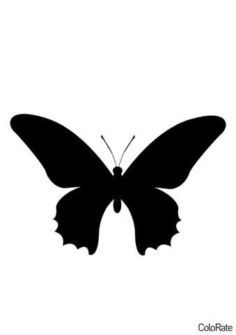 Крапивница - Трафареты бабочек трафарет распечатать на А4
