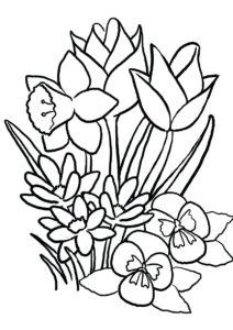 Весна распечатать раскраску - Красивые цветы